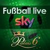 Fußball live im Palais 6