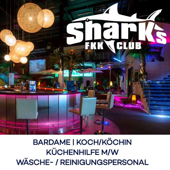 Darmstadt sharks in How to